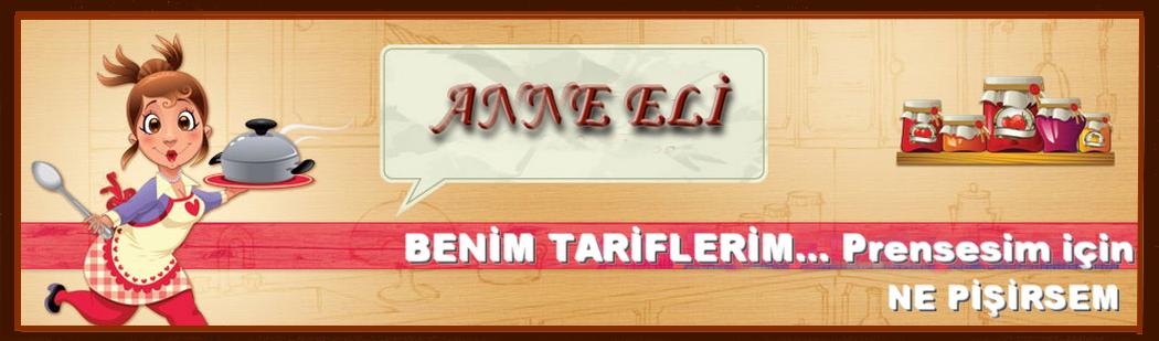 ANNE ELİ / Benim tariflerim