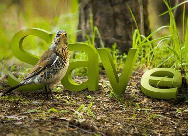 Save by dkomov