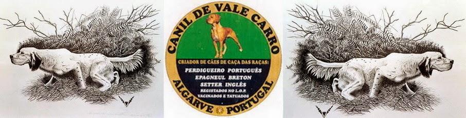 CRIADOR DE VALE CARRO