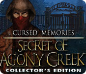 Cursed Memories: The Secret of Agony Creek Collector's Edition picture