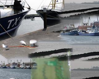 http://www.paypro.nl/producten/Het_Mentale_TURBO_DIEET_Plan/9227/48164