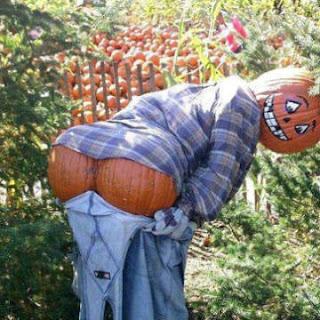 imagem-engracada-abobora-halloween
