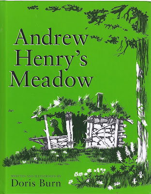 Andrew Henry's Meadow book cover