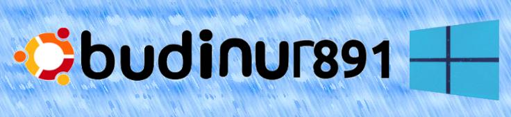 BUDINUR891