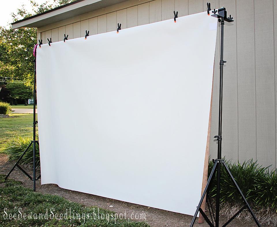 Summer camp backyard movie fun design dazzle for Backyard screen