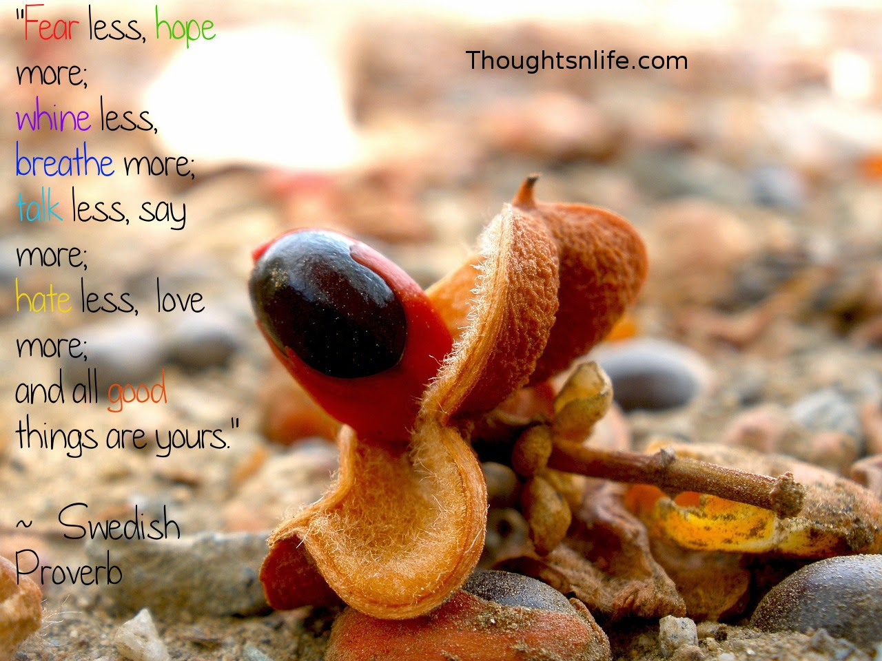 "Thoughtsnlife.com:""Fear less, hope more;  whine less, breathe more;  talk less, say more;  hate less,  love more;  and all good things are yours.""  ~   Swedish Proverb"