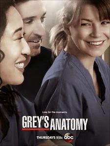Capitulo 16 Anatomía de Grey Temporada 10