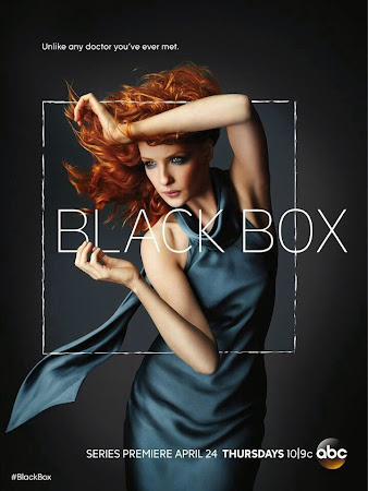 Black Box S01 TV 2014