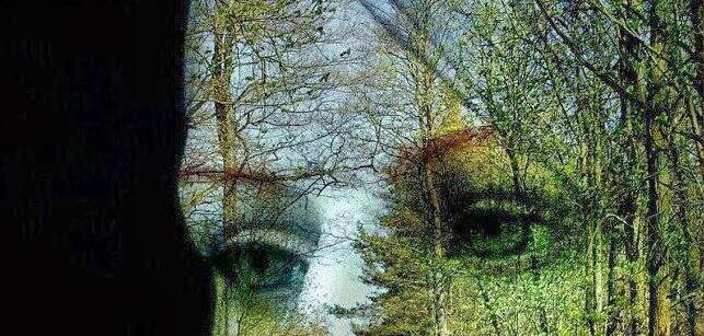 paisaje - arte - mujer - armonia -