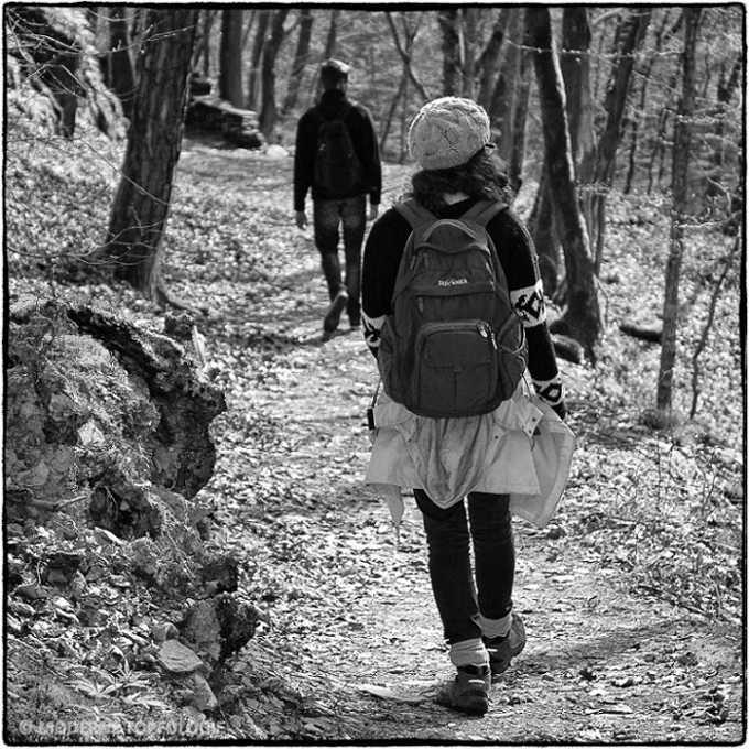 Wanderung auf der Traumschleife Baybachklamm im Hunsrück.