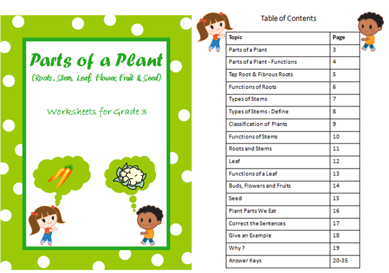 Parts of a Plant - root, stem , leaf, flower, fruit, seed - worksheets