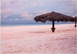 pink beach bahama