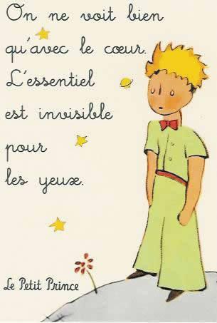 Belaserra Frases Do Livro O Pequeno Principe