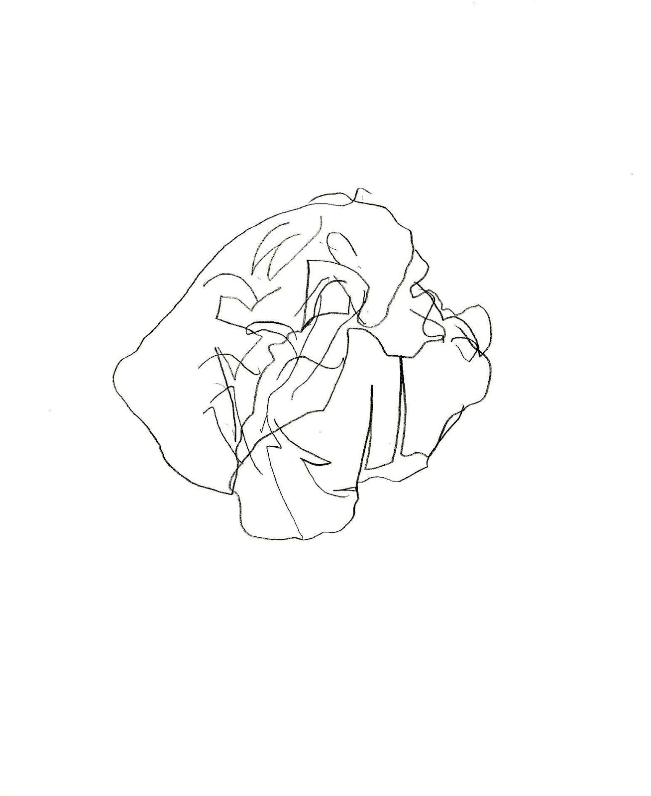 Daniela cantor betty edwars aprender a dibujar for Papel para dibujar