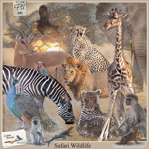 Safari Wildlife