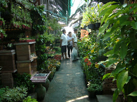Garden Market in Bangkok