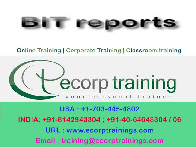 BIT reports online training