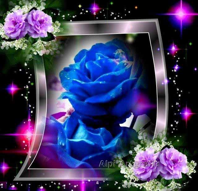 Blue Rose Pictures Tracy Morgan
