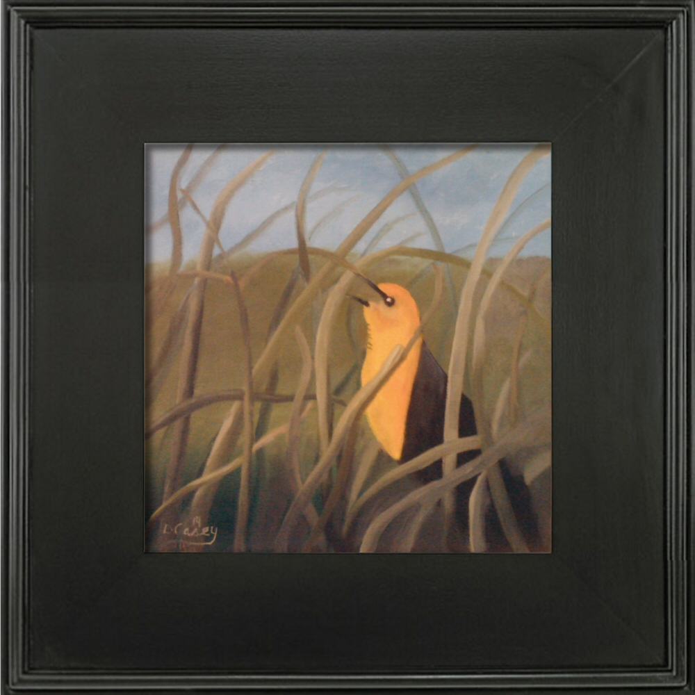 Yellow Headed Blackbird 001a 12x12 oil on stretched canvas - Dave Casey - TheDailyPainter.com.jpg