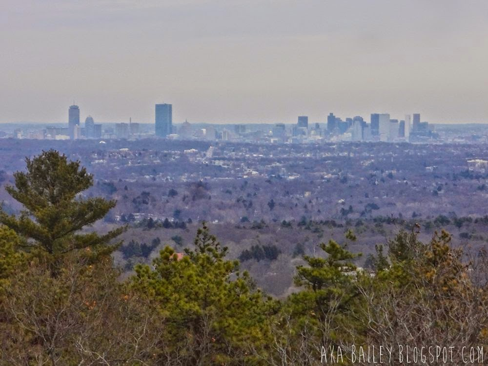 View of downtown Boston from Great Blue HIll