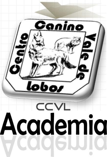 Departamento de Formação do CCVL