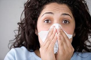 Makanan untuk Menangkal Flu