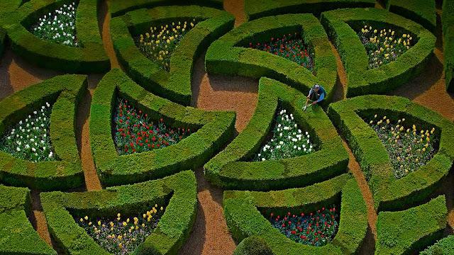Gardens at Château de Villandry, Loire Valley, France (© Emilie Chaix/Getty Images) 617