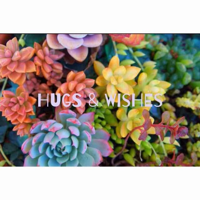 hugs&wishes