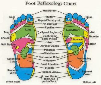Japanese Foot Chart. Chinese Foot Massage Group Picture Image By ...