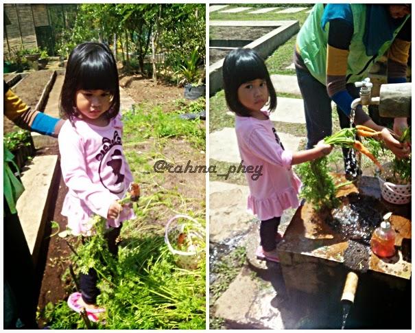 Jendela Bermain Di Jendela Alam Bandung Yeaayy