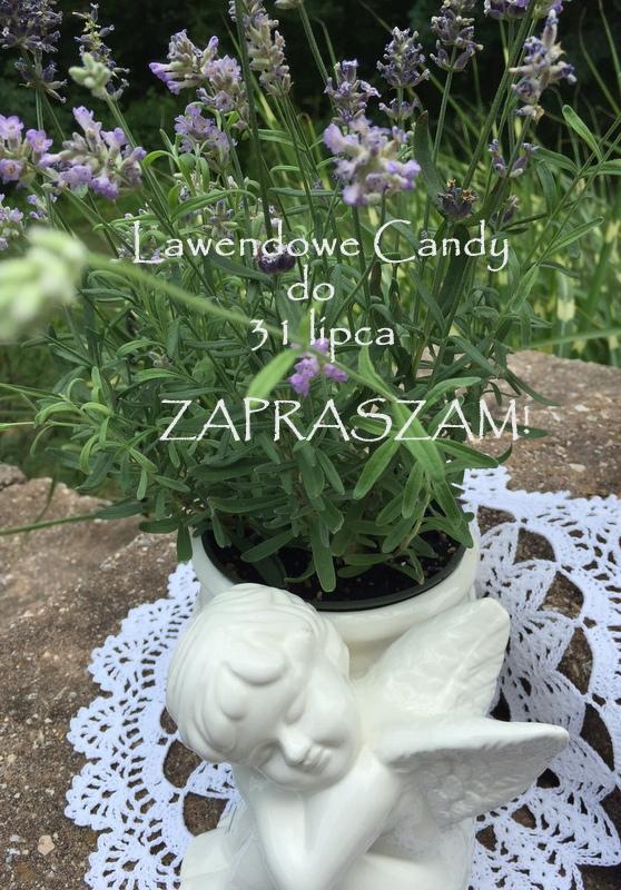 Lawendowe candy