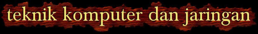 pengguna komputer