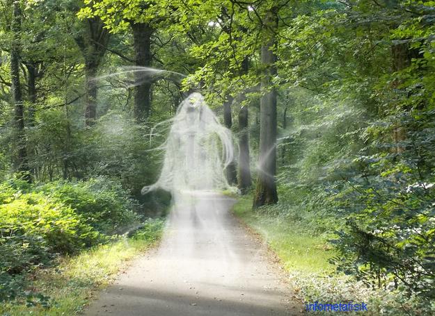 cerita hantu hutan kalimantan timur