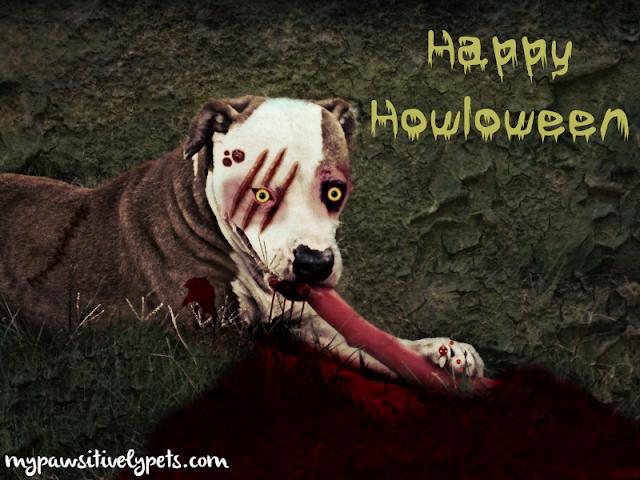 Creepy zombie dog