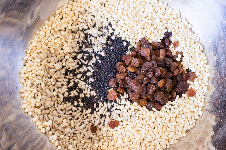 Ayurveda Recipe, Adrienne Shum, Winter Sun, Prairie Yogi, Ayurveda Winter Self Care, Granola bar recipe