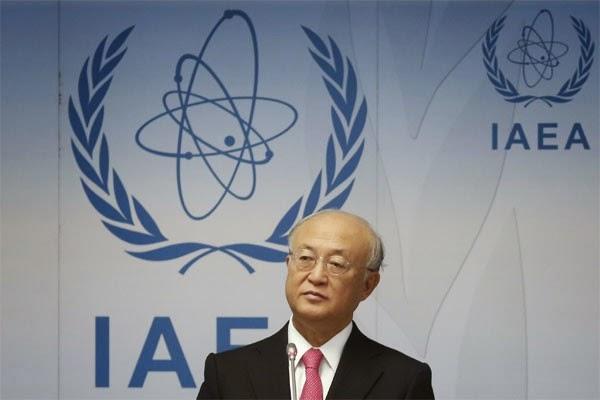 Indonesia dukung konsesus standar keselamatan nuklir