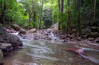 Rio Marquezote, Urumita. La Guajira. Colombia.