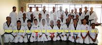 CURSO ESTADUAL DE INSTRUTORES DE TAEKWONDO -2013