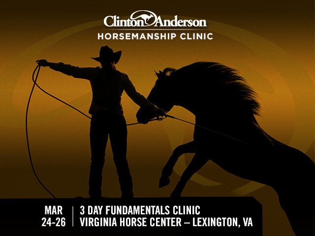 Bring your horse to Lexington, Va and learn the Fundamentals