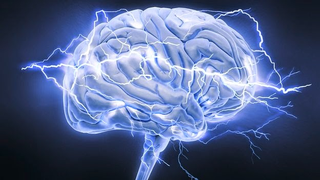 Longevity Gene May Also Boost Brain Power
