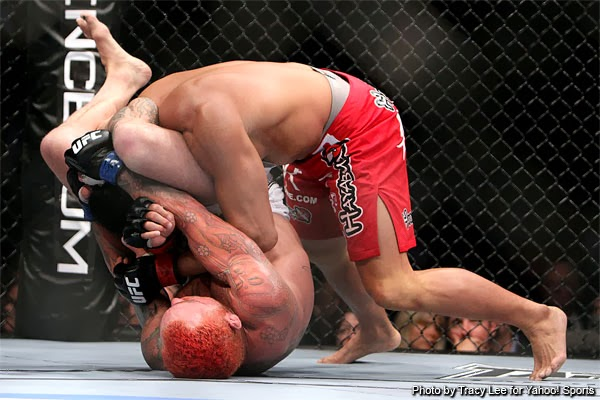 Image result for What Are the Combat Forms of MMA?