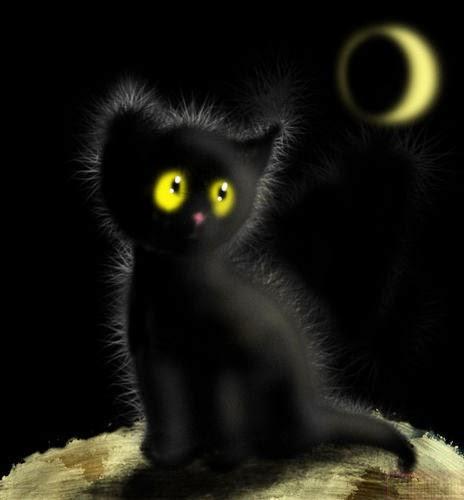 Если черный кот перебегает дорогу