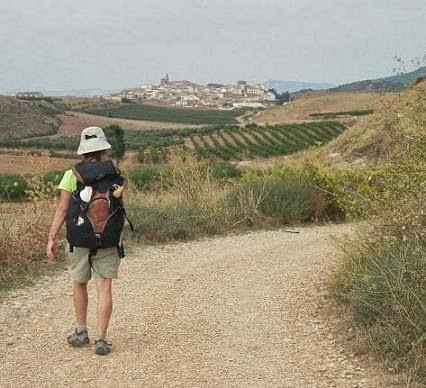 Mis caminos a Santiago y otras peregrinaciones