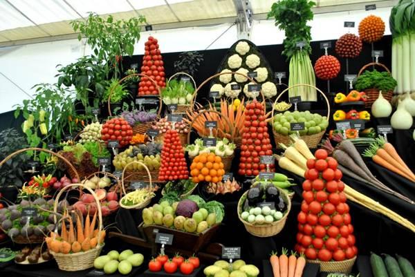 العروض الفنيه للخضروات