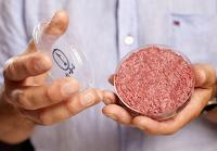 Histórico: primeiro hambúrguer do mundo produzido em laboratório é apresentado em Londres