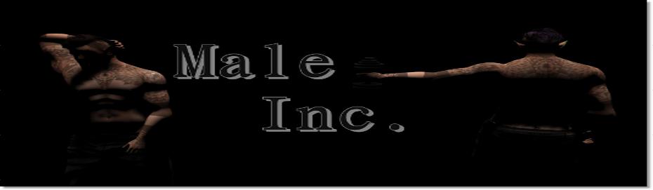 Male Inc.