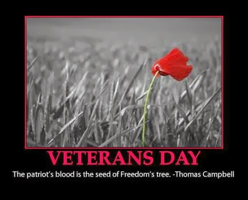 Meaning Veterans Day quotes by Thomas Campbell