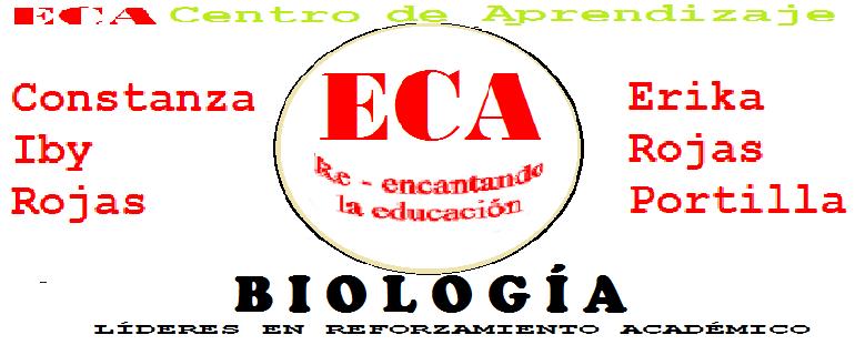 BIOLOGÍA nivel enseñanza media