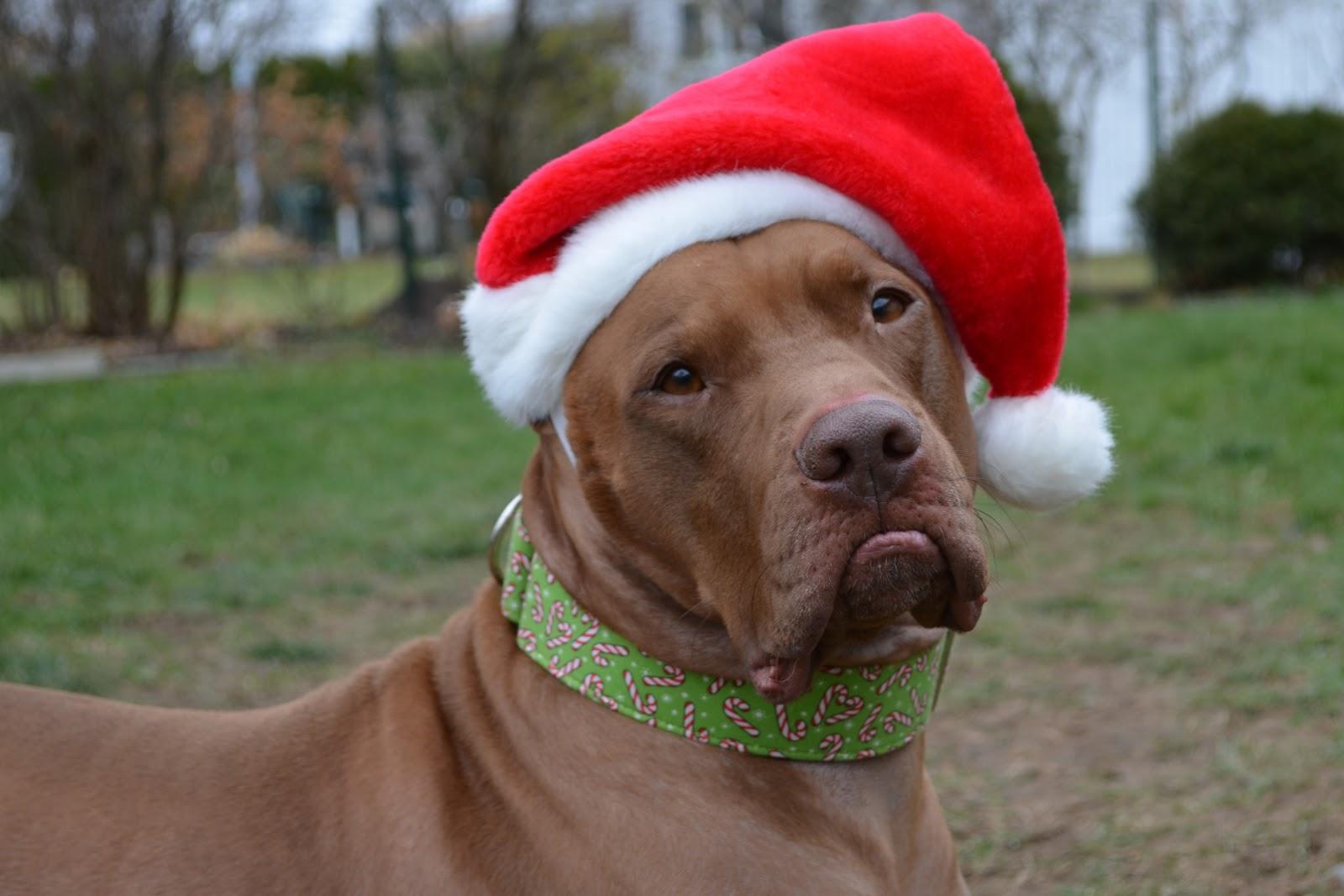 Oh, Corbin: I\'m gettin\' nuttin\' for Christmas...