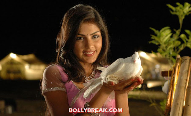 Riya faces camera while holding pigeon - Riya latest photo shoot in pink saree